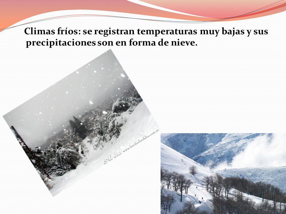 Climas fríos: se registran temperaturas muy bajas y sus precipitaciones son en forma de nieve.