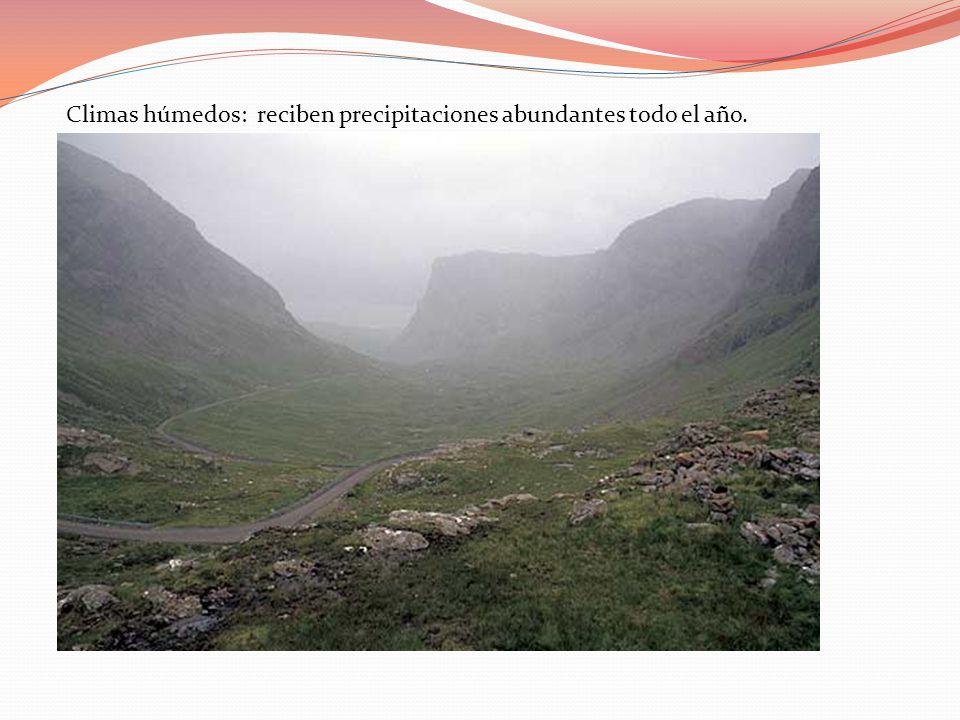 Climas húmedos: reciben precipitaciones abundantes todo el año.