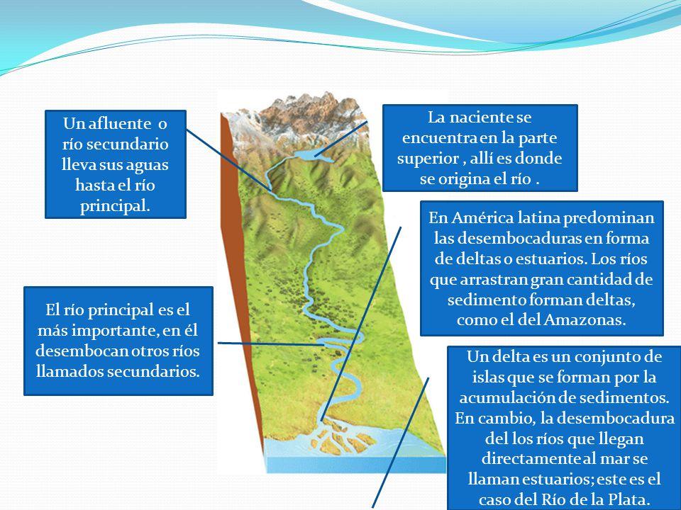 La naciente se encuentra en la parte superior, allí es donde se origina el río. Un afluente o río secundario lleva sus aguas hasta el río principal. E