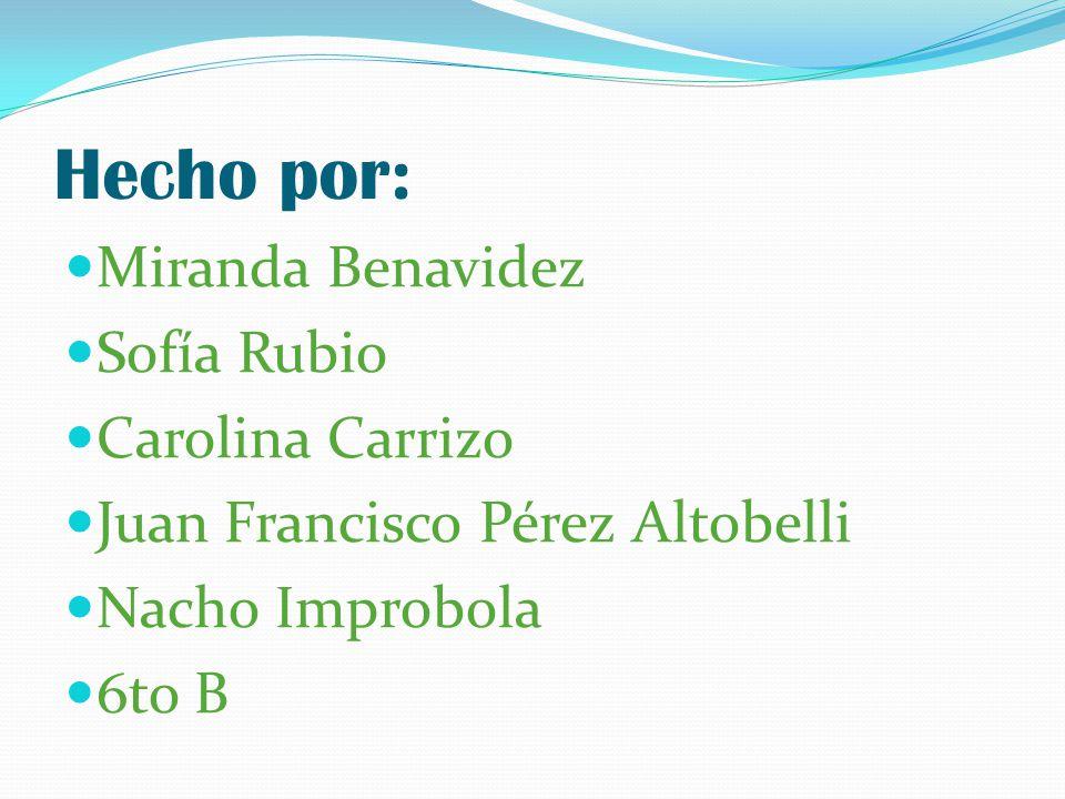 Hecho por: Miranda Benavidez Sofía Rubio Carolina Carrizo Juan Francisco Pérez Altobelli Nacho Improbola 6to B
