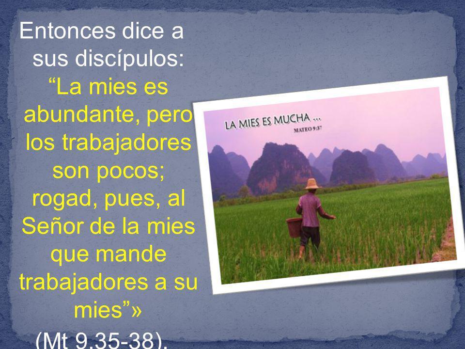 Entonces dice a sus discípulos: La mies es abundante, pero los trabajadores son pocos; rogad, pues, al Señor de la mies que mande trabajadores a su mies» (Mt 9,35-38).