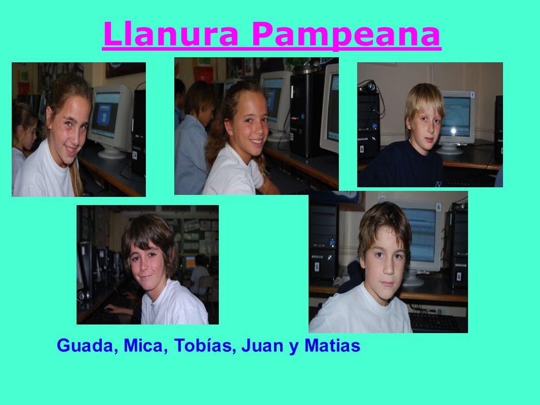 Llanura Pampeana Guada, Mica, Tobías, Juan y Matias
