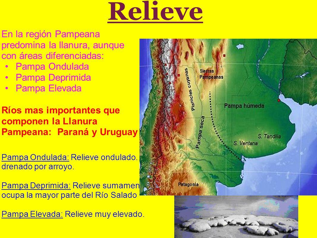 Relieve En la región Pampeana predomina la llanura, aunque con áreas diferenciadas: Pampa Ondulada Pampa Deprimida Pampa Elevada Ríos mas importantes