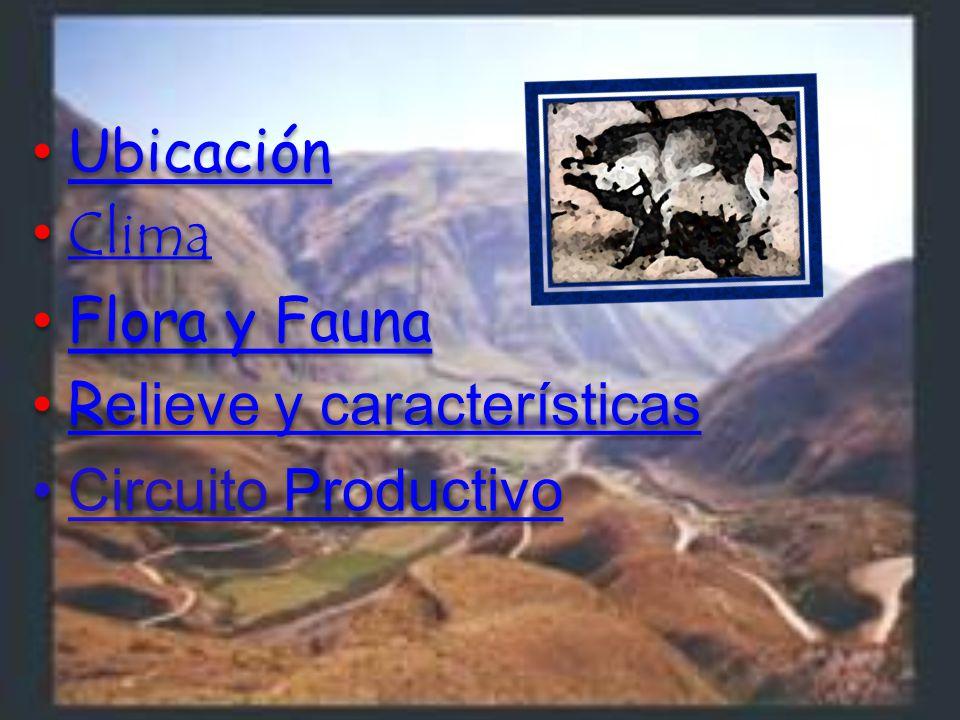 Ubicación Clima Flora y Fauna Relieve y característicasRelieve y características Circuito ProductivoProductivo Ubicación Clima Flora y Fauna Relieve y