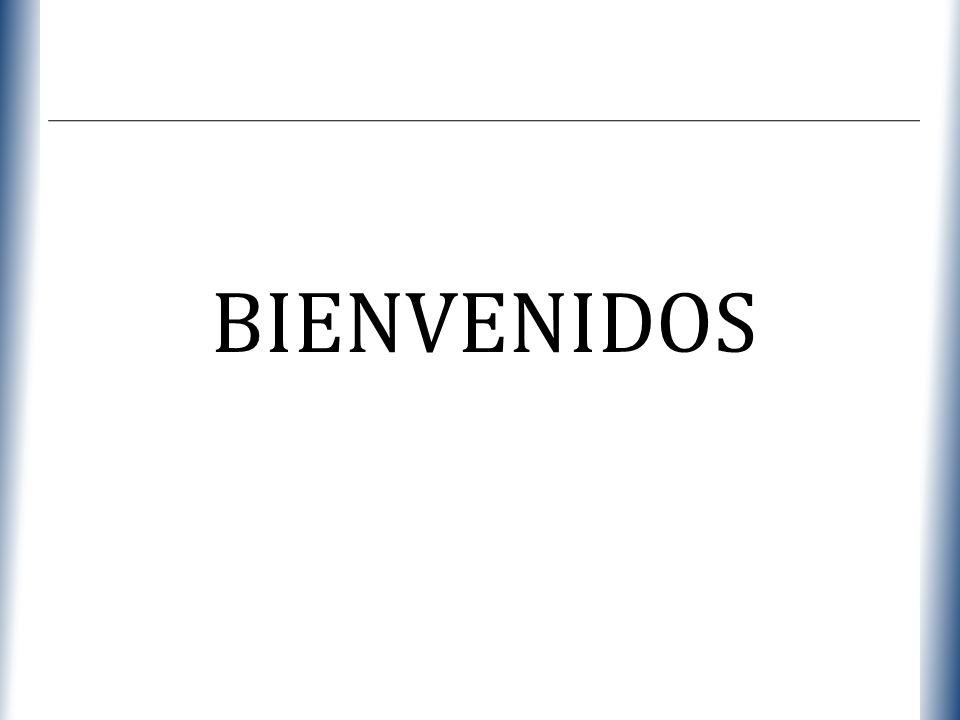 XP BIENVENIDOS