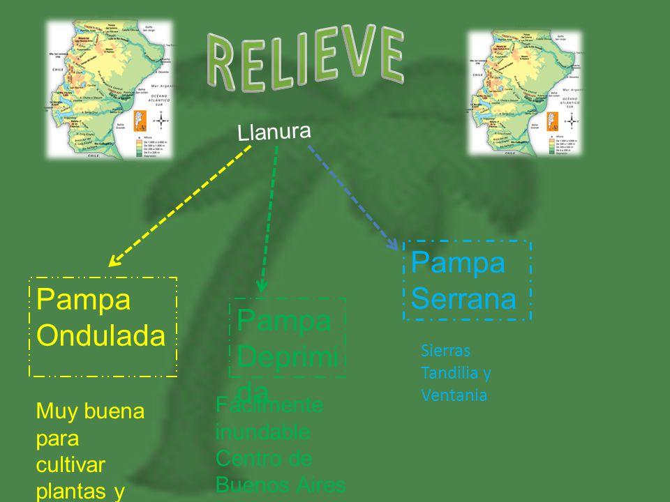 Llanura Pampa Ondulada Pampa Deprimi da Pampa Serrana Sierras Tandilia y Ventania Fácilmente inundable Centro de Buenos Aires Muy buena para cultivar