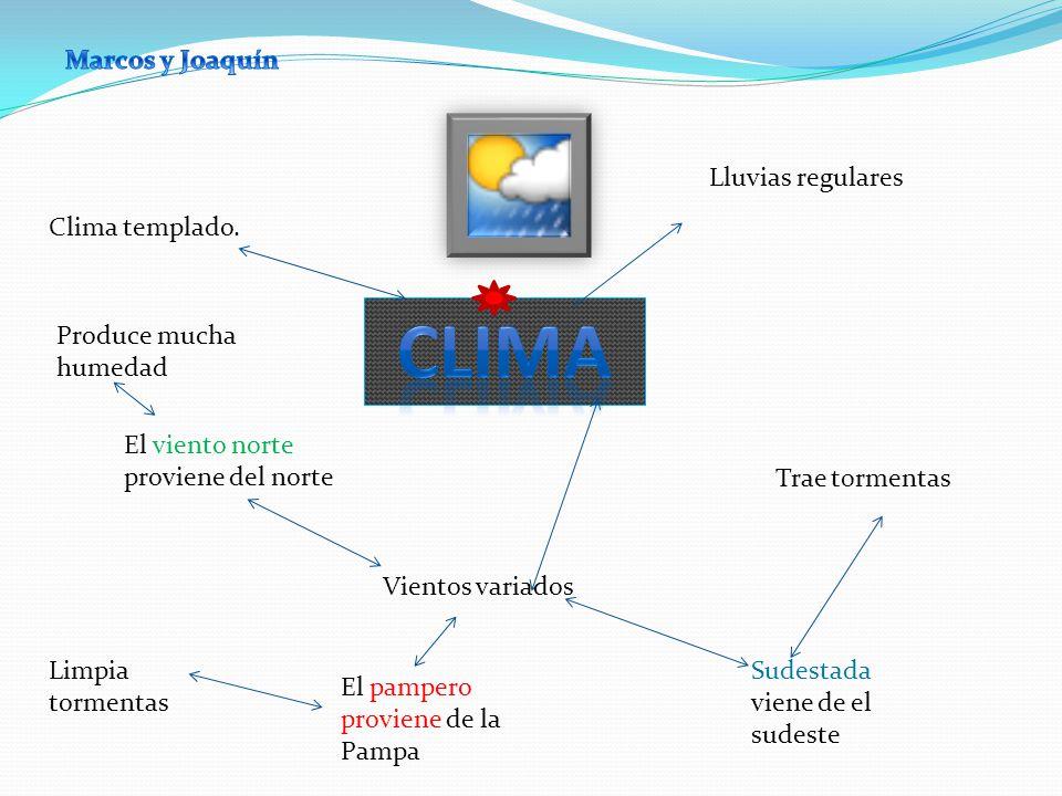 Clima templado. Lluvias regulares Vientos variados Sudestada viene de el sudeste El pampero proviene de la Pampa El viento norte proviene del norte Pr
