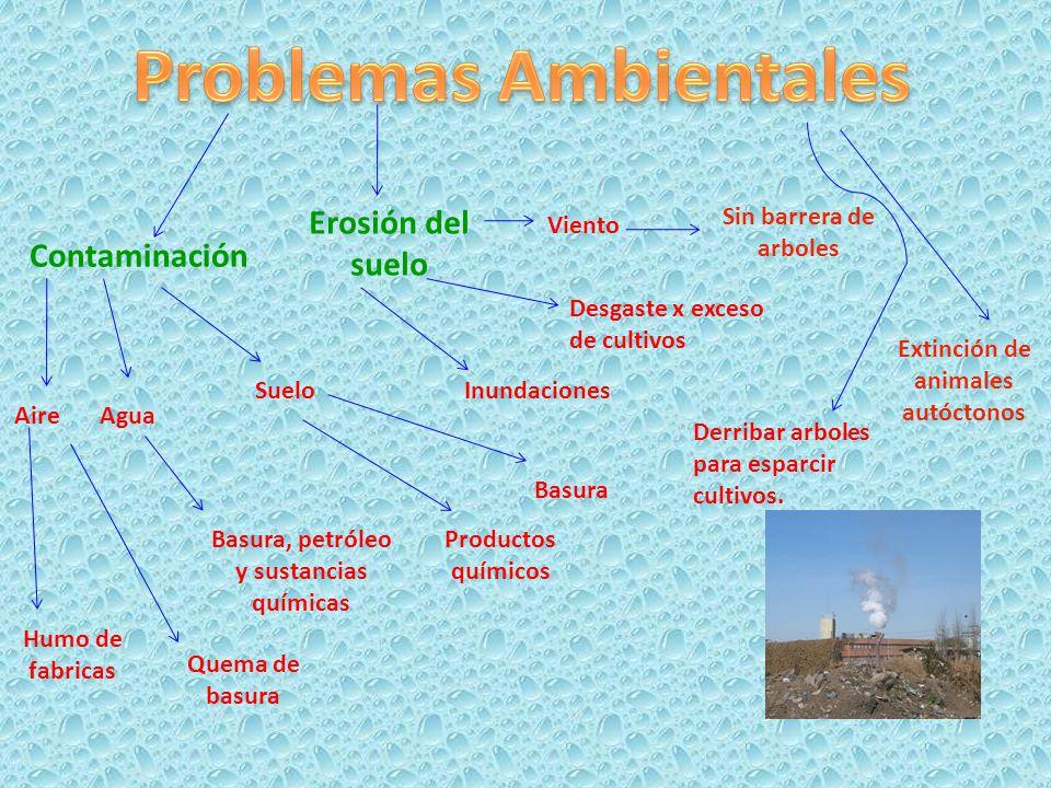 Contaminación Aire Humo de fabricas Quema de basura Agua Basura, petróleo y sustancias químicas Suelo Basura Productos químicos Erosión del suelo Inun