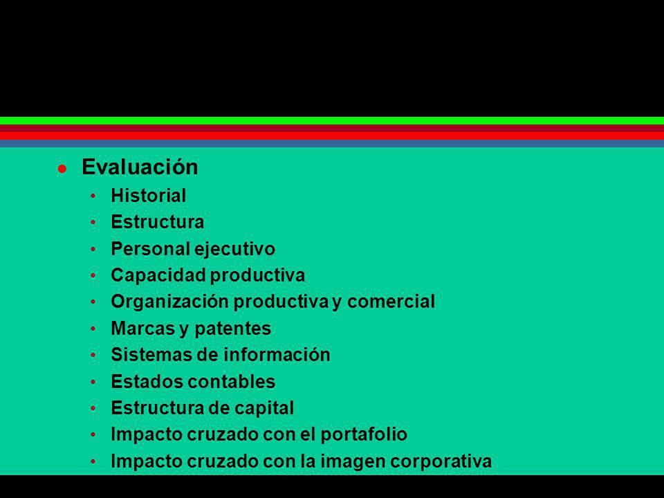 Evaluación Historial Estructura Personal ejecutivo Capacidad productiva Organización productiva y comercial Marcas y patentes Sistemas de información