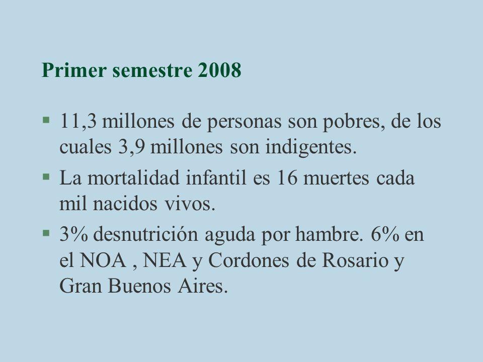 Primer semestre 2008 §11,3 millones de personas son pobres, de los cuales 3,9 millones son indigentes. §La mortalidad infantil es 16 muertes cada mil