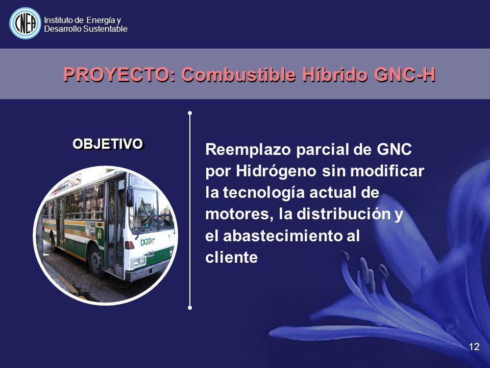 12 Reemplazo parcial de GNC por Hidrógeno sin modificar la tecnología actual de motores, la distribución y el abastecimiento al cliente Instituto de E