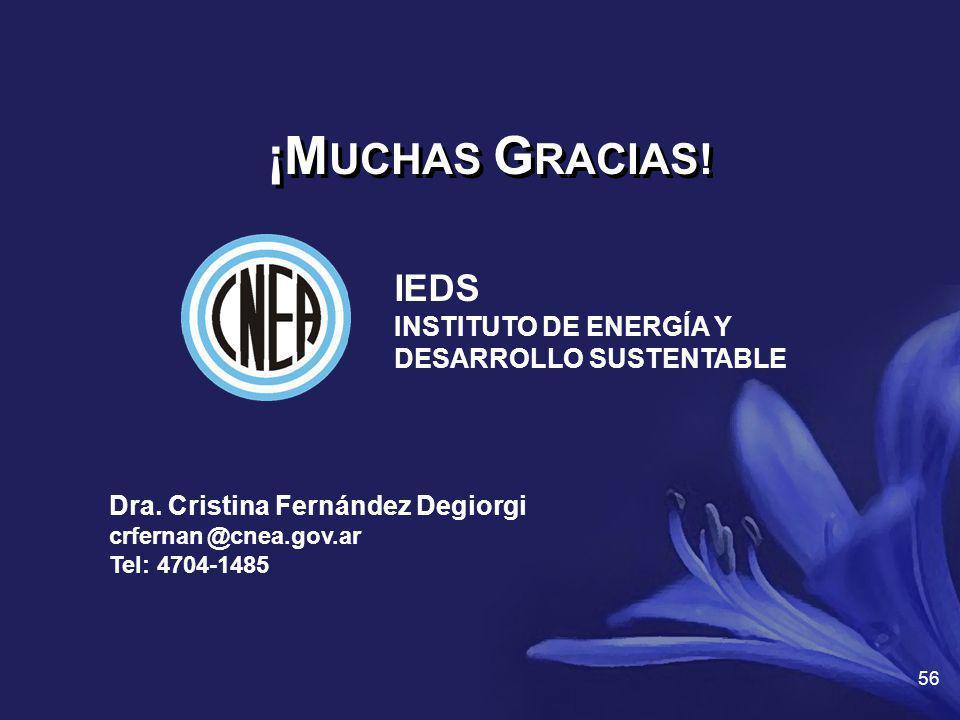Dra. Cristina Fernández Degiorgi crfernan @cnea.gov.ar Tel: 4704-1485 ¡M UCHAS G RACIAS! 56 IEDS INSTITUTO DE ENERGÍA Y DESARROLLO SUSTENTABLE