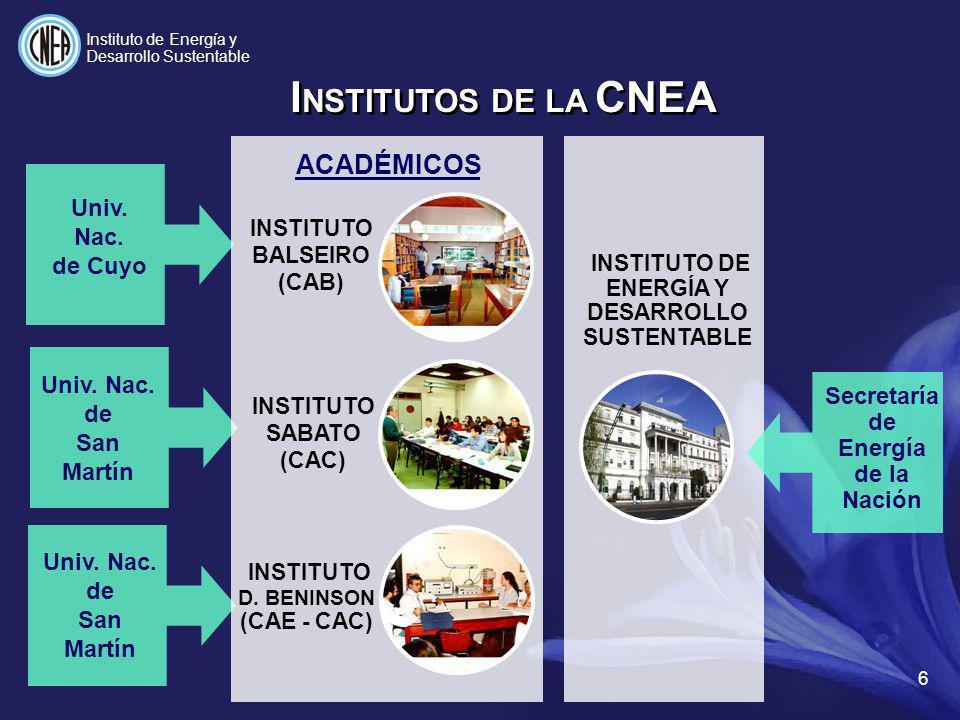 INSTITUTO DE ENERGÍA Y DESARROLLO SUSTENTABLE Secretaría de Energía de la Nación I NSTITUTOS DE LA CNEA ACADÉMICOS INSTITUTO BALSEIRO (CAB) INSTITUTO