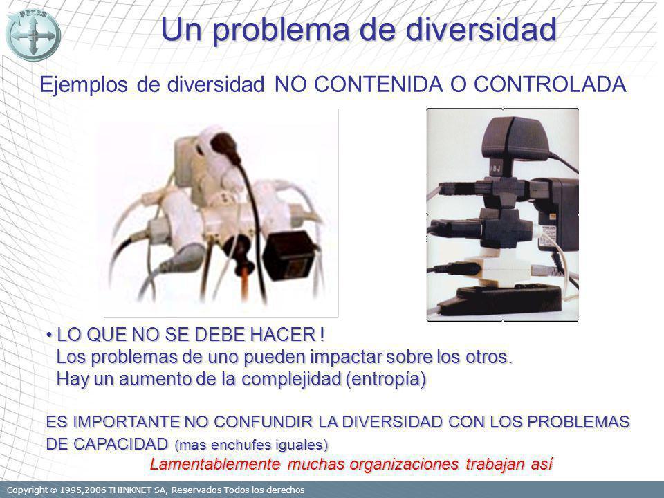 Copyright 1995,2006 THINKNET SA, Reservados Todos los derechos Un problema de diversidad Ejemplos de diversidad NO CONTENIDA O CONTROLADA LO QUE NO SE DEBE HACER .