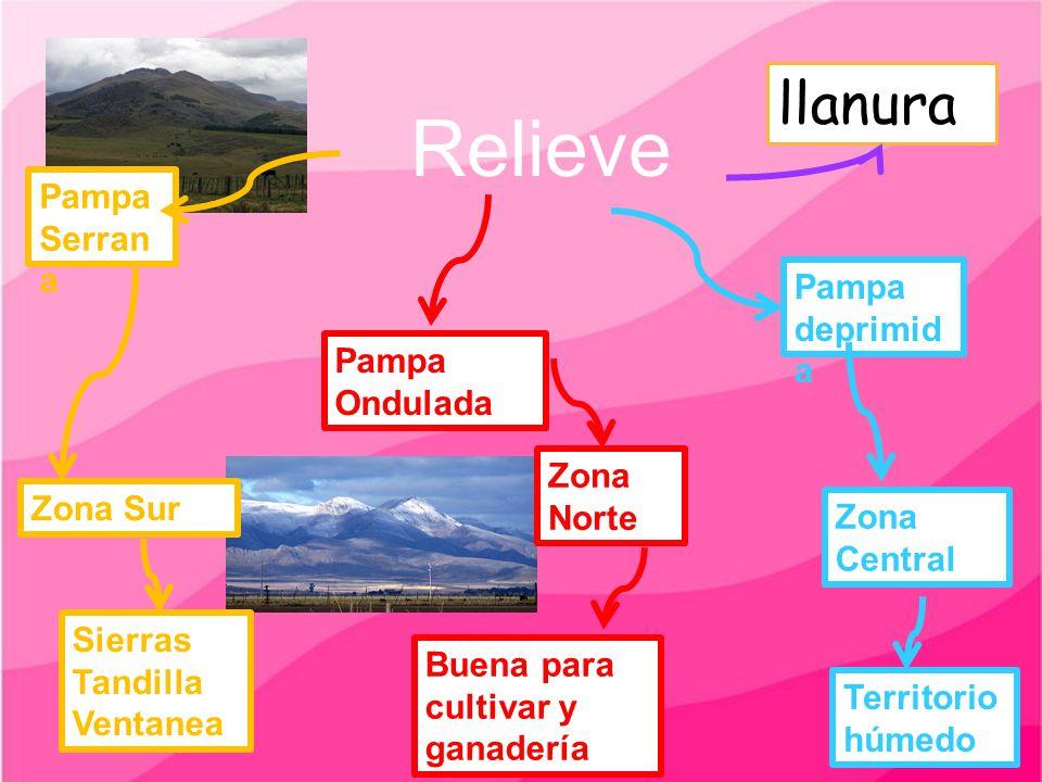 Relieve Pampa deprimid a Pampa Ondulada Pampa Serran a Zona Sur Zona Norte Zona Central Sierras Tandilla Ventanea Buena para cultivar y ganadería Terr