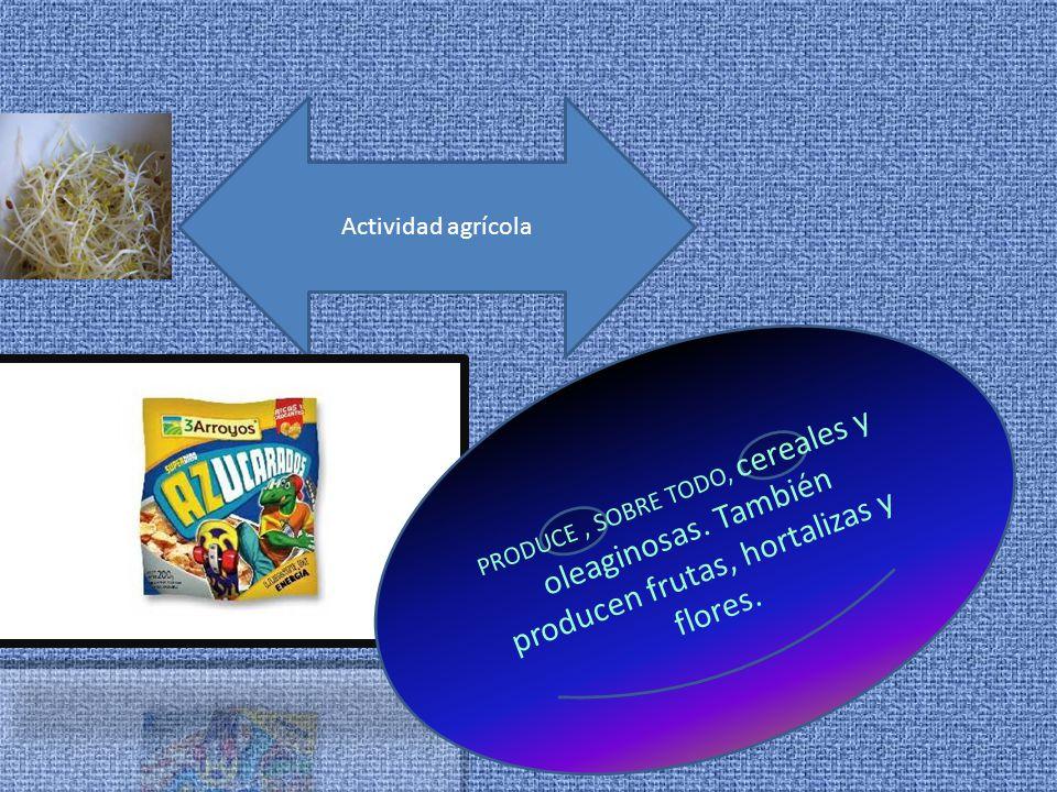 Actividad agrícola PRODUCE, SOBRE TODO, cereales y oleaginosas.