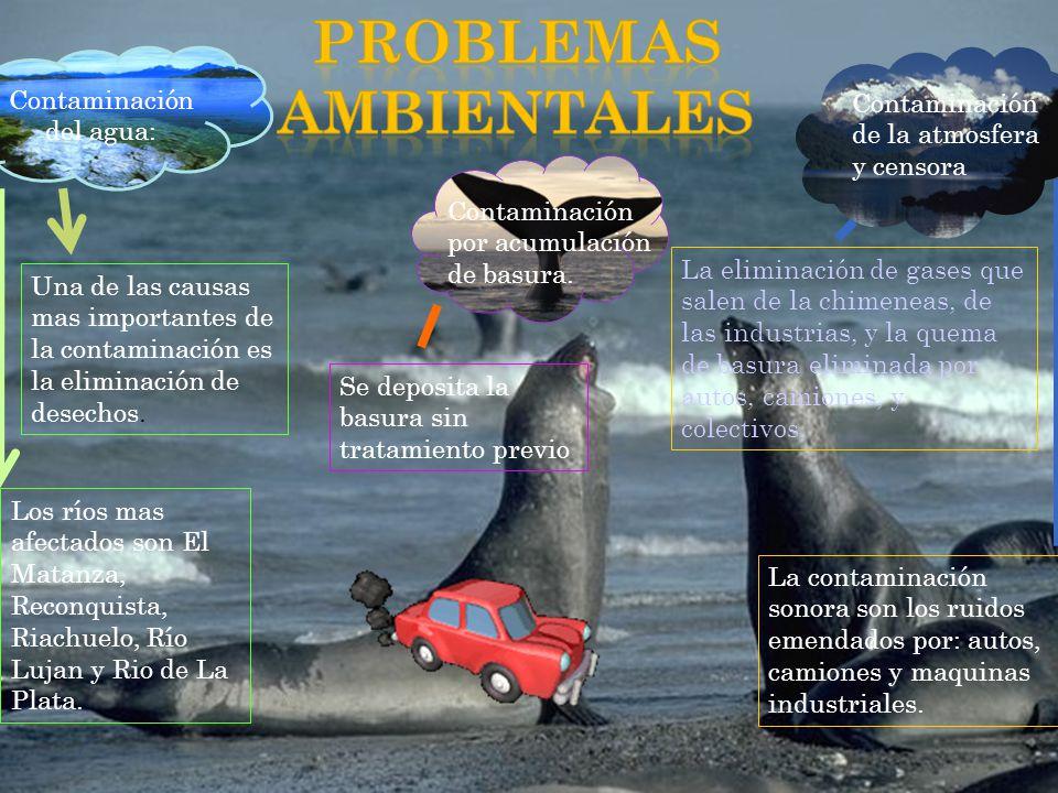 Contaminación del agua: Los ríos mas afectados son El Matanza, Reconquista, Riachuelo, Río Lujan y Rio de La Plata.