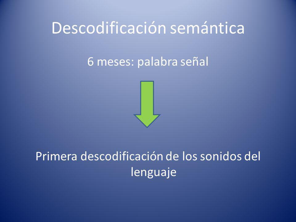 Descodificación semántica 6 meses: palabra señal Primera descodificación de los sonidos del lenguaje