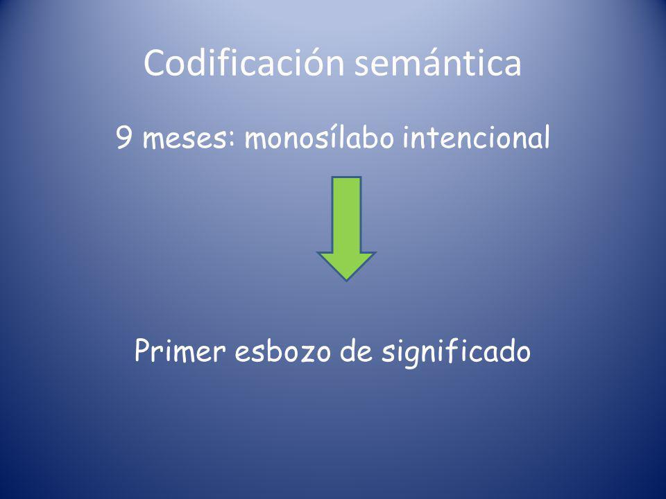 Codificación semántica 9 meses: monosílabo intencional Primer esbozo de significado