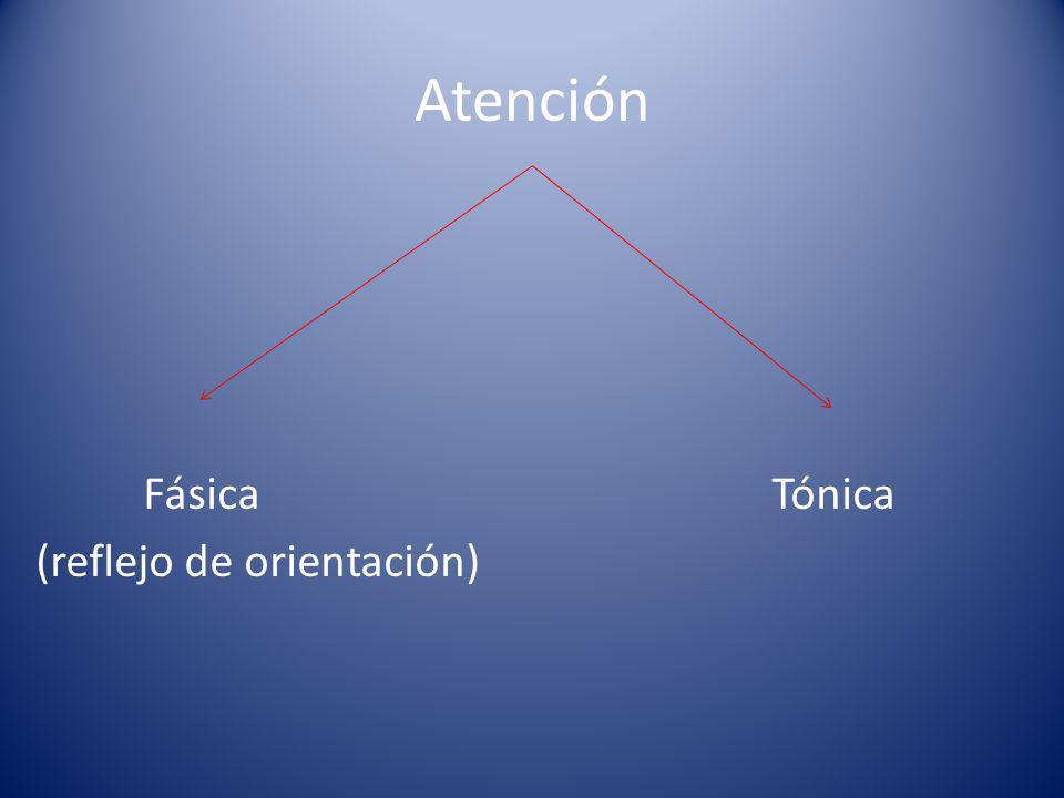 Atención Fásica Tónica (reflejo de orientación)