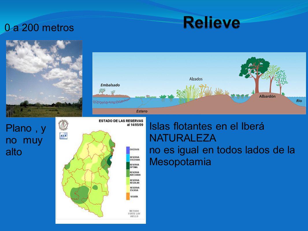 0 a 200 metros Plano, y no muy alto Islas flotantes en el Iberá NATURALEZA no es igual en todos lados de la Mesopotamia