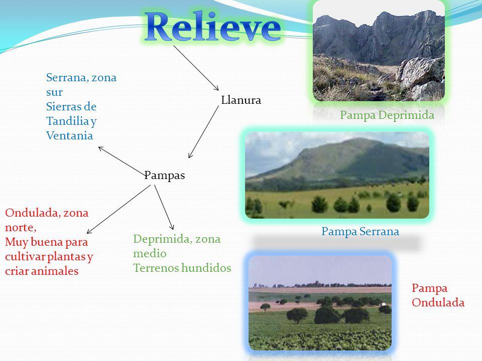 Llanura Pampas Ondulada, zona norte, Muy buena para cultivar plantas y criar animales Deprimida, zona medio Terrenos hundidos Serrana, zona sur Sierra