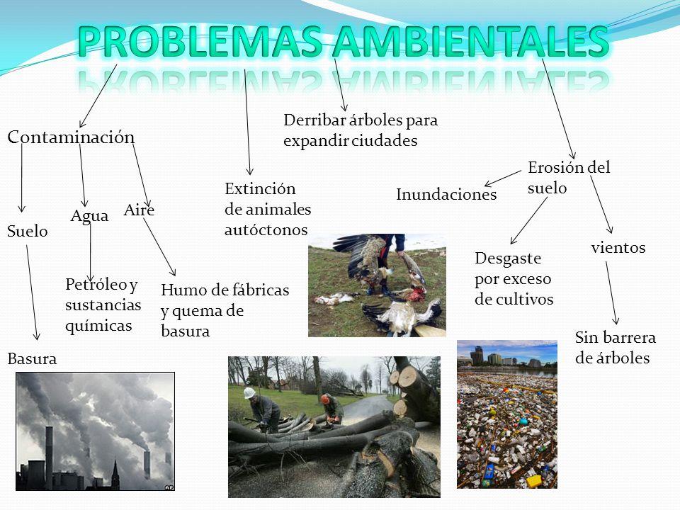 Contaminación Aire Agua Suelo Petróleo y sustancias químicas Basura Humo de fábricas y quema de basura Erosión del suelo Inundaciones Desgaste por exc