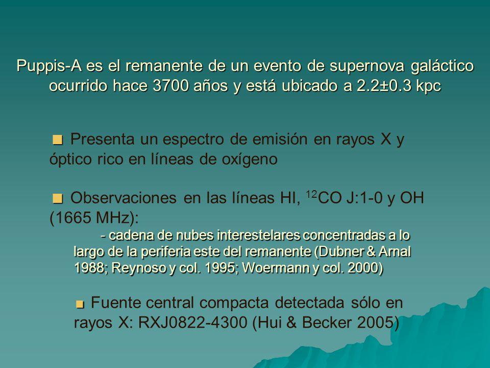 Puppis-A es el remanente de un evento de supernova galáctico ocurrido hace 3700 años y está ubicado a 2.2±0.3 kpc Presenta un espectro de emisión en r