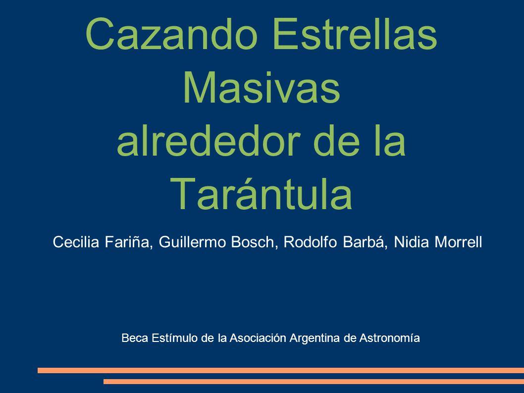 Cazando Estrellas Masivas alrededor de la Tarántula Cecilia Fariña, Guillermo Bosch, Rodolfo Barbá, Nidia Morrell Beca Estímulo de la Asociación Argen
