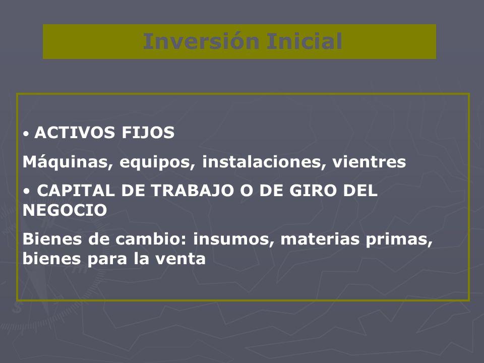 Inversión Inicial ACTIVOS FIJOS Máquinas, equipos, instalaciones, vientres CAPITAL DE TRABAJO O DE GIRO DEL NEGOCIO Bienes de cambio: insumos, materia