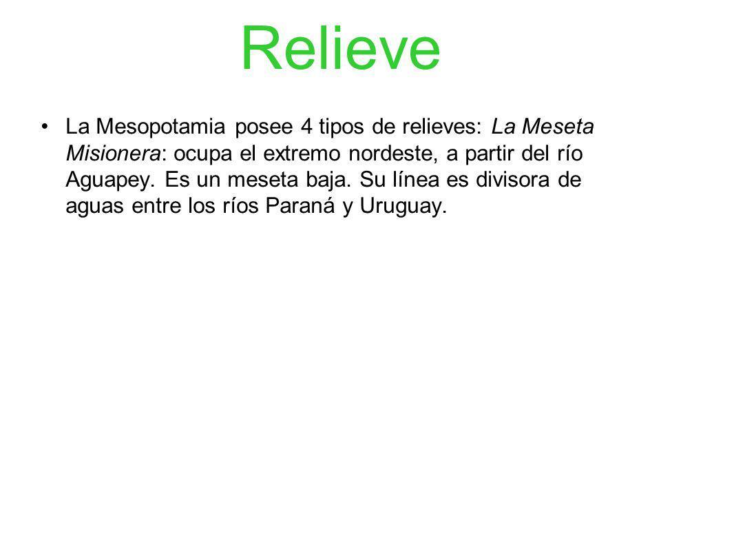 Relieve La Mesopotamia posee 4 tipos de relieves: La Meseta Misionera: ocupa el extremo nordeste, a partir del río Aguapey. Es un meseta baja. Su líne