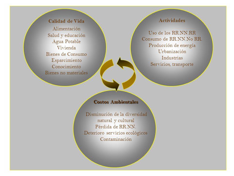 Problemas Ambientales Regionales 4.
