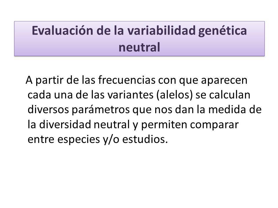 Evaluación de la variabilidad genética neutral A partir de las frecuencias con que aparecen cada una de las variantes (alelos) se calculan diversos pa