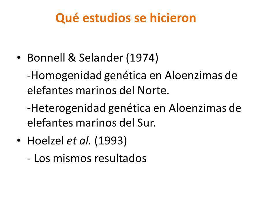 Qué estudios se hicieron Bonnell & Selander (1974) -Homogenidad genética en Aloenzimas de elefantes marinos del Norte. -Heterogenidad genética en Aloe