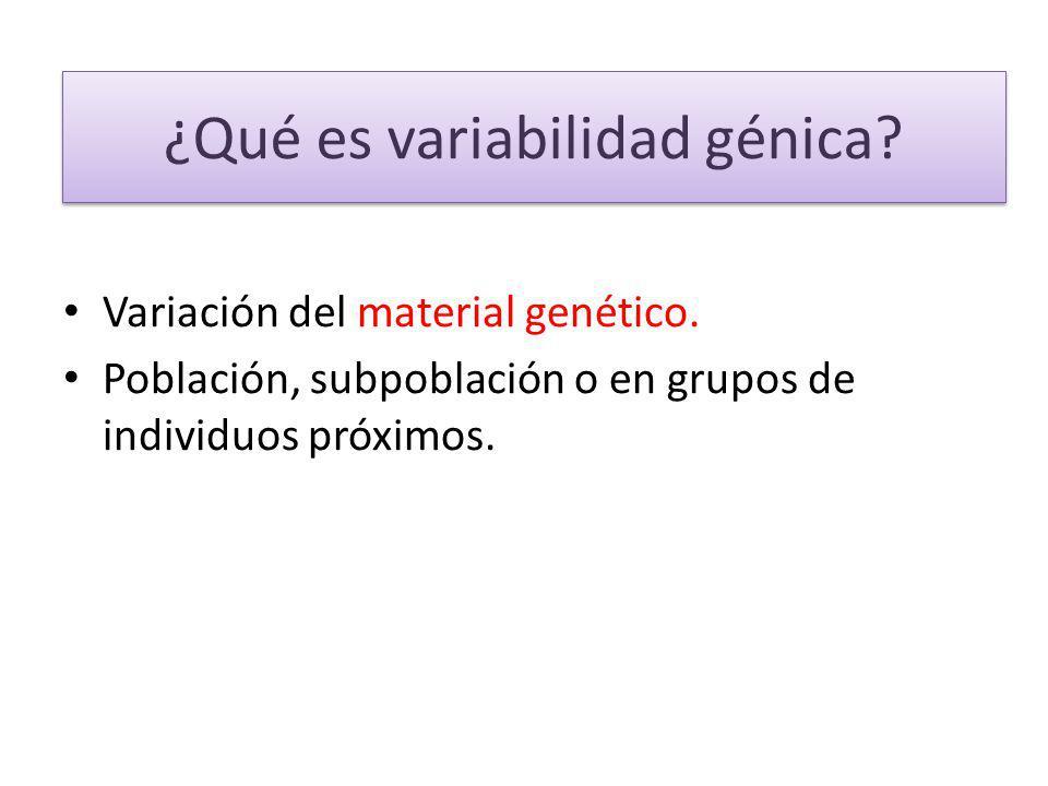 ¿Qué es variabilidad génica? Variación del material genético. Población, subpoblación o en grupos de individuos próximos.