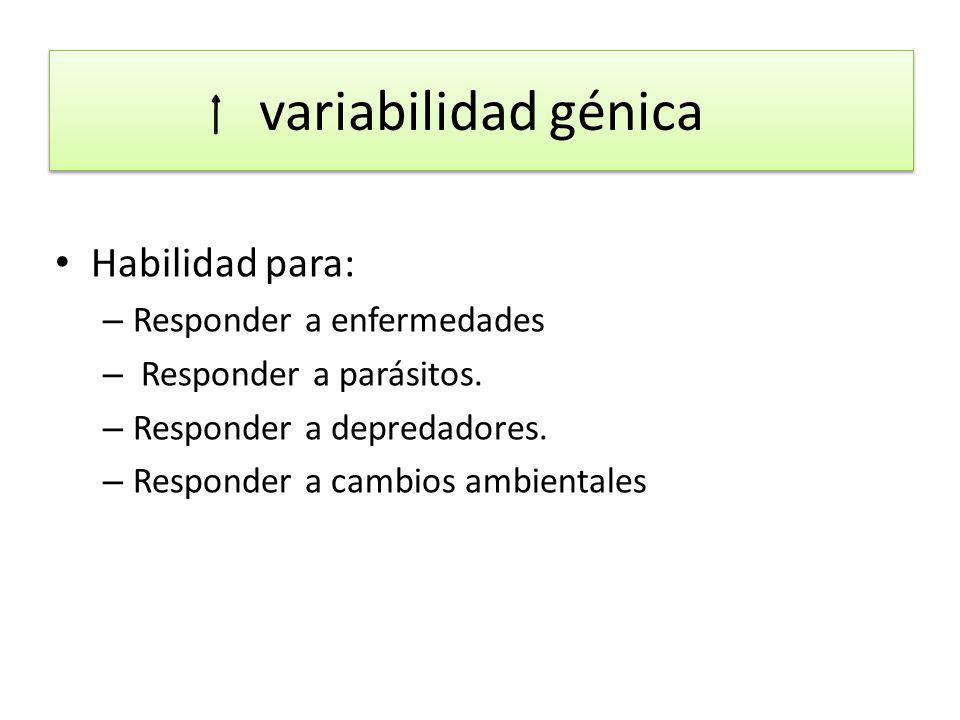 Hay dos tipos de variabilidad genética: VARIACIÓN ADAPTATIVA VARIABILIDAD GENÉTICA NEUTRAL