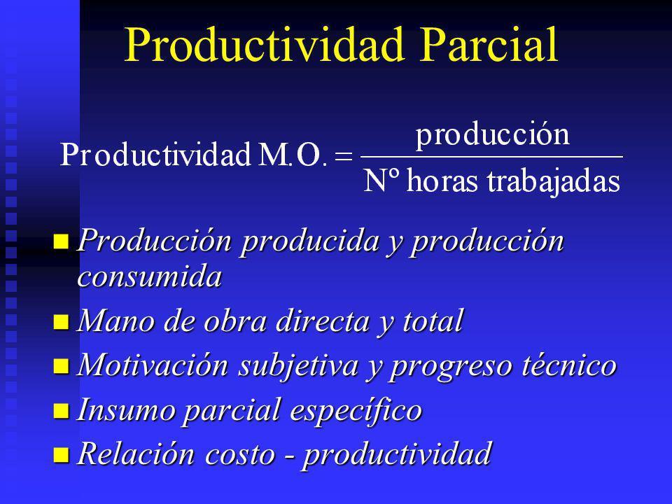 Productividad Parcial Producción producida y producción consumida Producción producida y producción consumida Mano de obra directa y total Mano de obr
