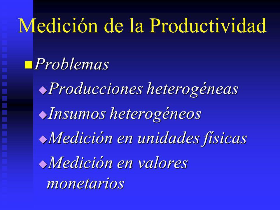 Medición de la Productividad Problemas Problemas Producciones heterogéneas Producciones heterogéneas Insumos heterogéneos Insumos heterogéneos Medició