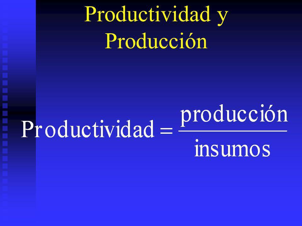 Productividad y Producción