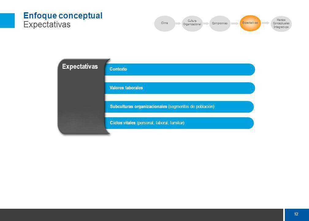12 Enfoque conceptual Expectativas Subculturas organizacionales (segmentos de población) Valores laborales Contexto Ciclos vitales (personal; laboral; familiar) Expectativas Clima Expectativas Marcos Conceptuales Integrativos Cultura Organizacional Compromiso
