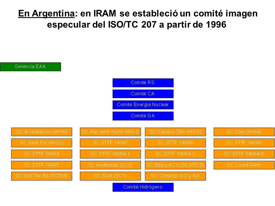 En Argentina: en IRAM se estableció un comité imagen especular del ISO/TC 207 a partir de 1996