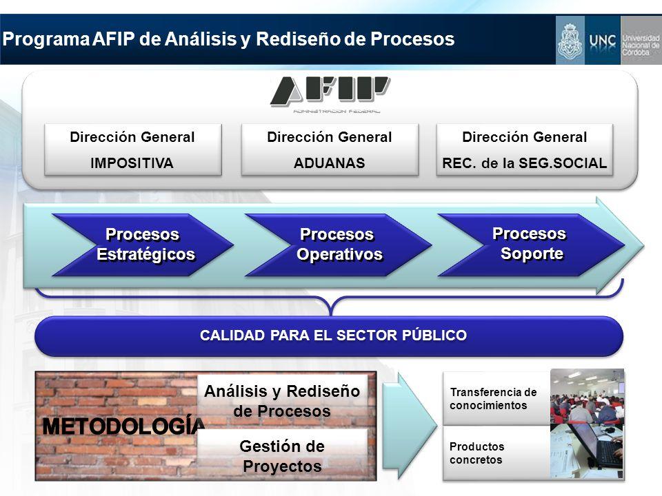 Programa AFIP de Análisis y Rediseño de Procesos Análisis y Rediseño de Procesos Gestión de Proyectos Transferencia de conocimientos Transferencia de