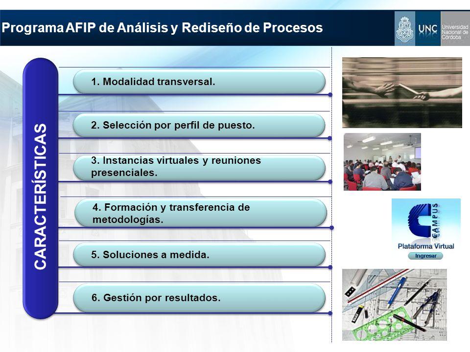 Programa AFIP de Análisis y Rediseño de Procesos 2. Selección por perfil de puesto. 3. Instancias virtuales y reuniones presenciales. 4. Formación y t