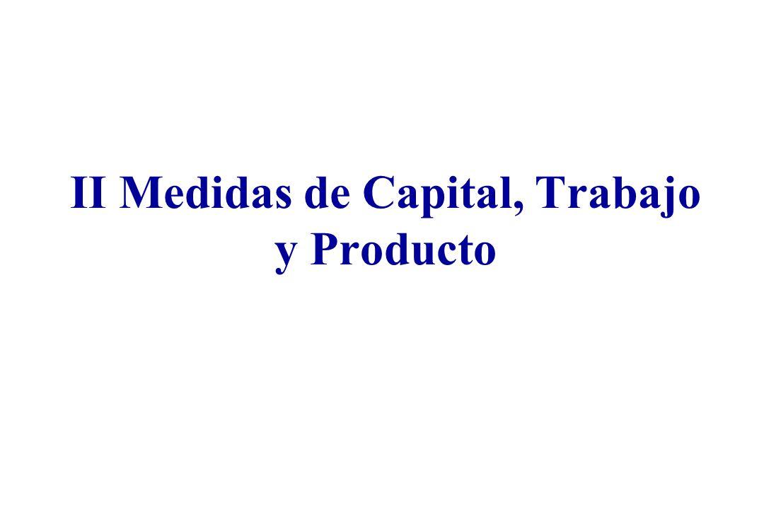II Medidas de Capital, Trabajo y Producto