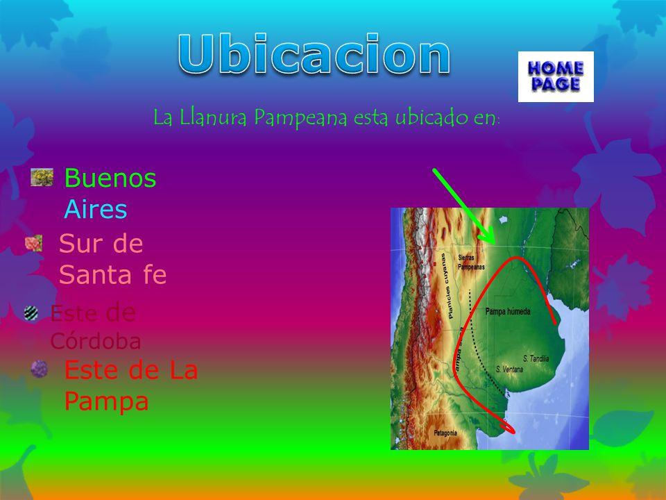 Buenos Aires Sur de Santa fe Este de Córdoba Este de La Pampa La Llanura Pampeana esta ubicado en :