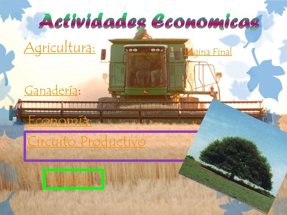 Agricultura: Ganadería: Circuito Productivo Economía: Pagina Final Turismo