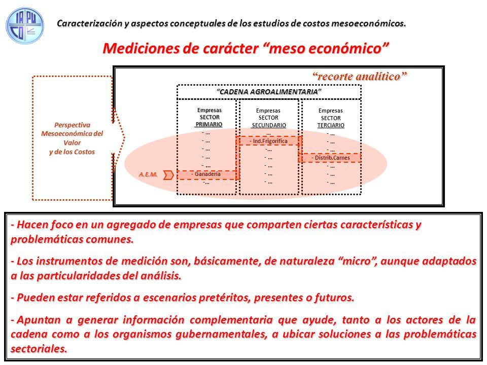 Mediciones de carácter meso económico UNIDAD de PRODUCCIÓN Cap. Financ. R. Naturales R. Humanos Bs.de Capital Bs. Intermed. Serv. Interm. UNIDAD de PR
