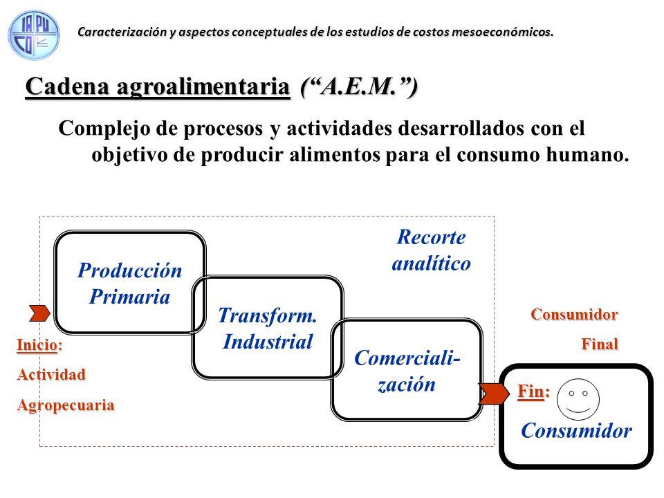 Cadena agroalimentaria (A.E.M.) Complejo de procesos y actividades desarrollados con el objetivo de producir alimentos para el consumo humano. Producc