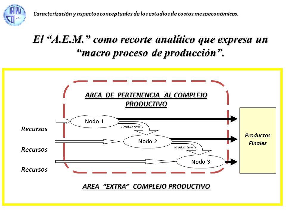 El A.E.M. como recorte analítico que expresa un macro proceso de producción. Caracterización y aspectos conceptuales de los estudios de costos mesoeco
