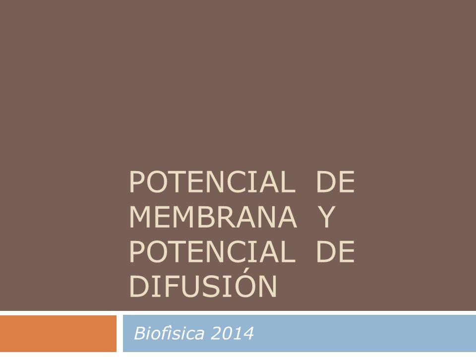 POTENCIAL DE MEMBRANA Y POTENCIAL DE DIFUSIÓN Biofìsica 2014